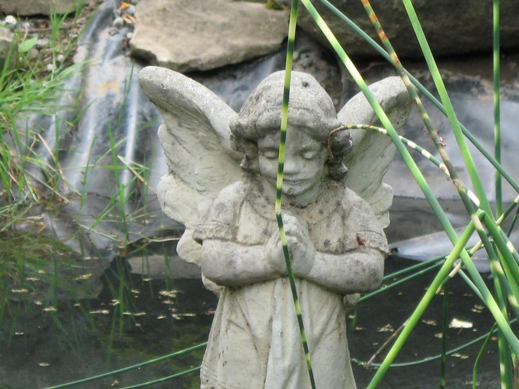 angel-21-1024x768