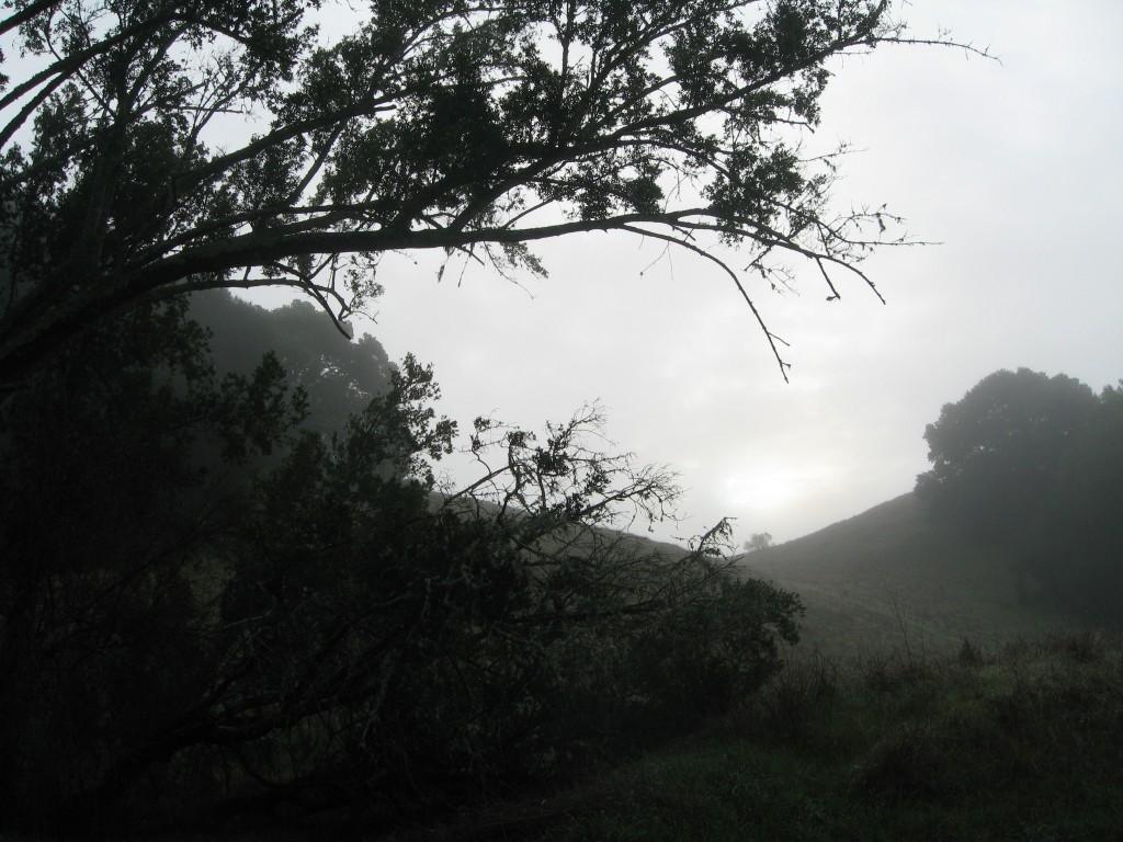 california-retreat-feb-mar-2011-016-1024x768